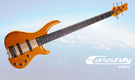 Cassidy CB901 5 String Active Bass