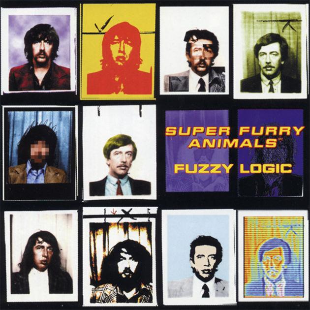Fuzzy Logic (1996)