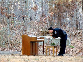 Working piano carefully abandoned in woods