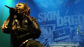 Skindred unleashes Kill The Power