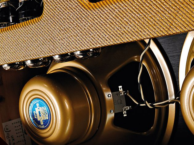 The clestion Alnico Gold speakers are premium options at a premium price.