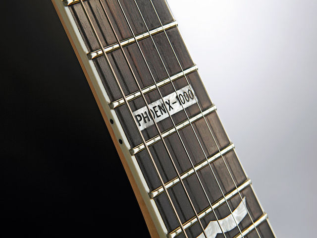Bound ebony fingerboard, huge frets - this one's a player.