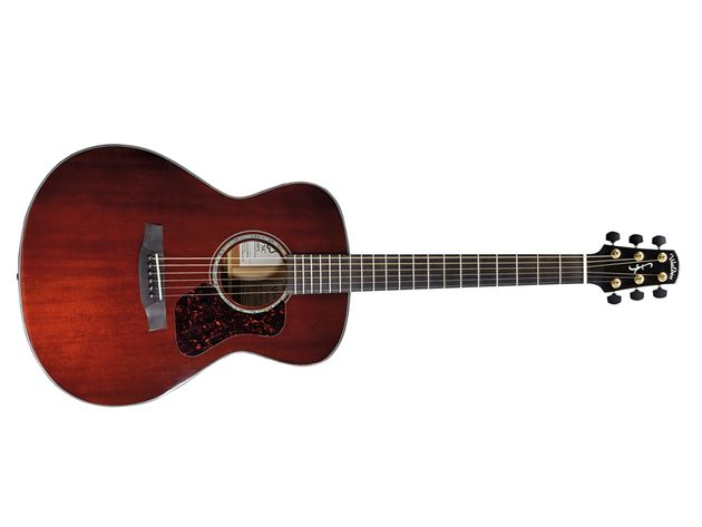 A tempting prospect for fingerpicking players.