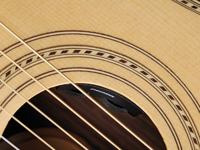 Volume and tone controls sit in the soundhole.