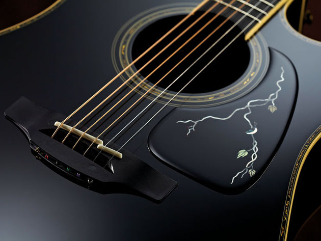 Takamine LTD 2012 'Michi' (£2518)