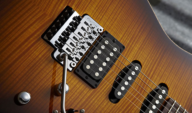 The Floyd Rose Pro Custom unit is back-routed for pull-up high jinx