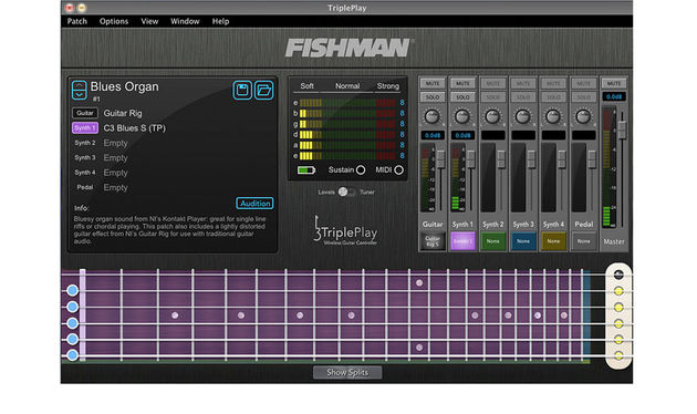 Fishman's TriplePlay software is the means by which all of the extra software is accessed