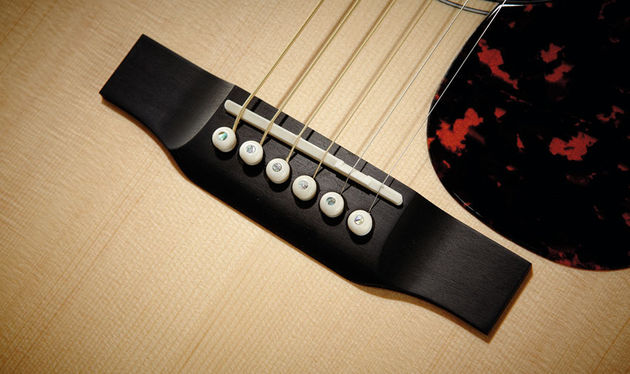 Ebony is used for the bridge, fingerboard and head facing