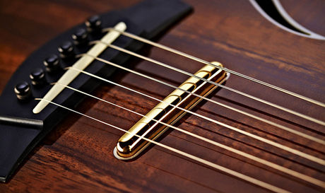 Only this stacked humbucker is visible; the T5z's other two pickups are placed in the neck joint and under the soundboard