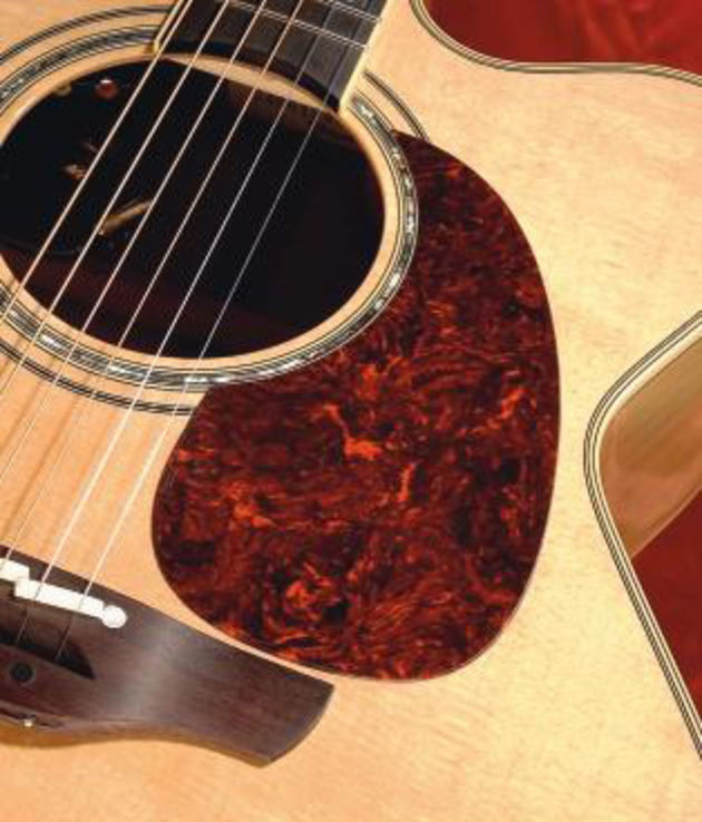 Takamine has gone for the sexy flame maple look.