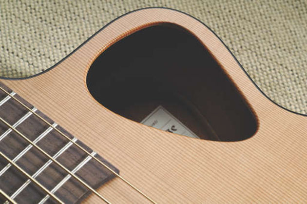 The unique positioning of the soundhole greatly reduces feedback.