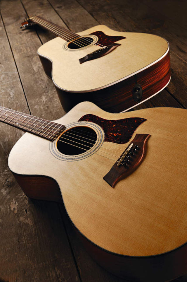 Taylor's 210ce (background guitar).