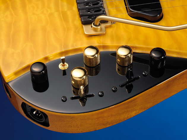 The 'special' controls are distinguished by gold hardware