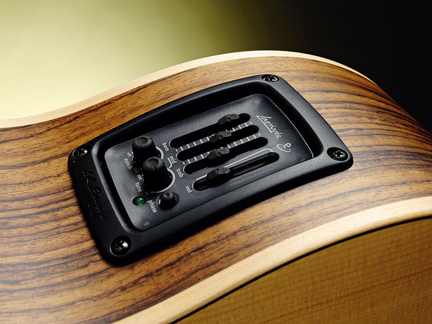 The bass features the LR Baggs Elemental Notch System