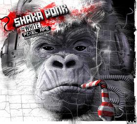 Wanna Get Free, le nouveau titre de Shaka Ponk