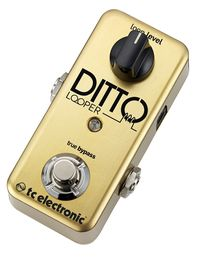 Le TC Electronic Ditto Looper tout d'or vêtu