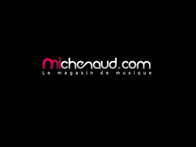 Michenaud