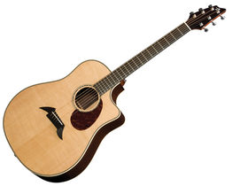 Breedlove Pro Series D25-SR Herringbone acoustic-electric guitar