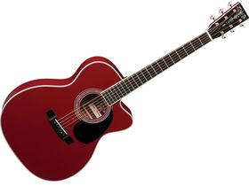 NAMM 2010: Martin unveils OOC-MR Steve Miller Custom acoustic