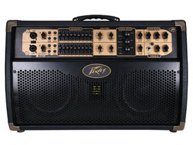 NAMM 2010: Peavey adds Session 300 amp to Ecoustic Series