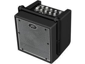 NAMM 2010: Peavey unveils Nano Vypyr guitar amp