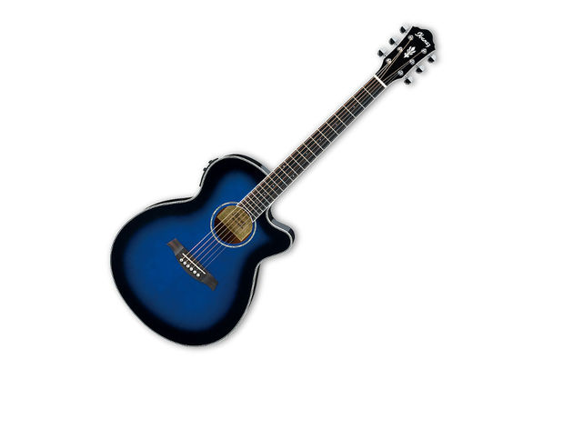 Ibanez AEG10II Electric-Acoustic Guitar