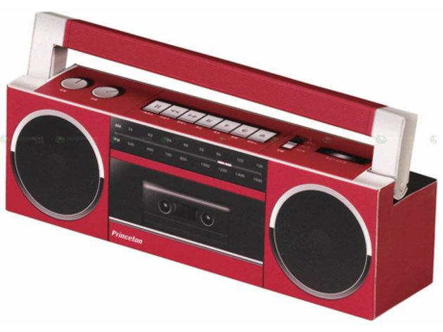 Princeton paper speaker kit