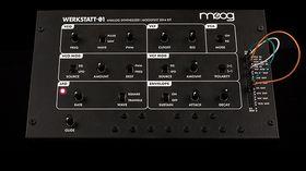 Le synthé DIY Moog Werkstatt-Ø1 désormais disponible à la vente