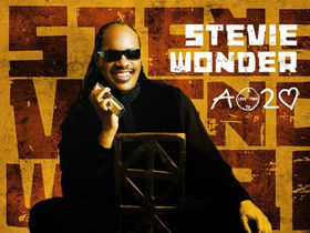 Stevie Wonder's house burned to the ground