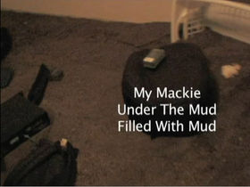 Mackie speakers survive horse dung deluge