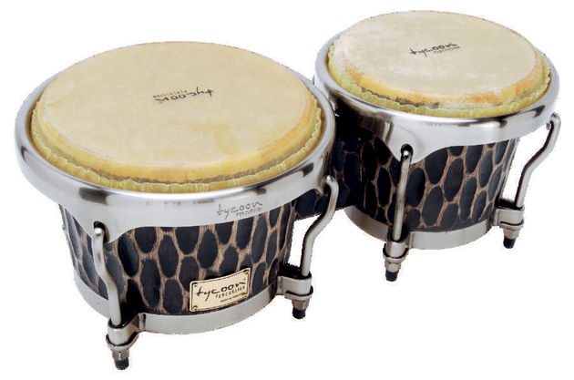 The thin buffalo-skin heads on the bongos respond beautifully.