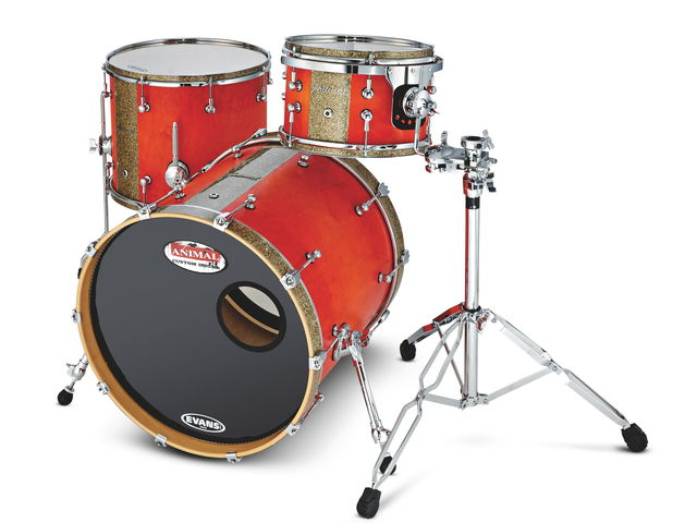 Animal Custom Drums Elite