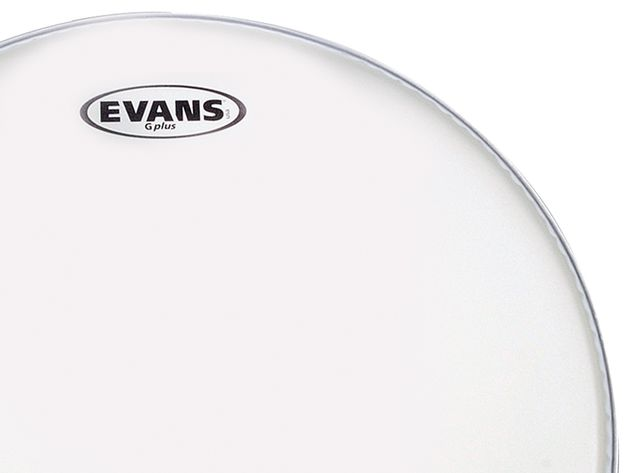 Evans G-Plus Coated single-ply tom head