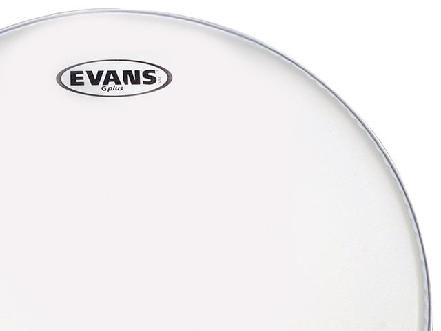 Best tom batter, single ply head: Evans G-Plus Coated