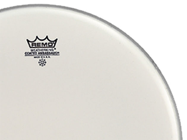 Remo Ambassador Coated single-ply snare head