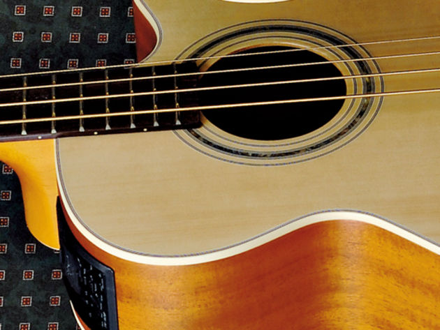 Takamine EG512C sounds, pros and cons