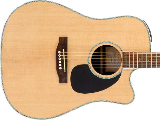 Takamine EG360SC build and features