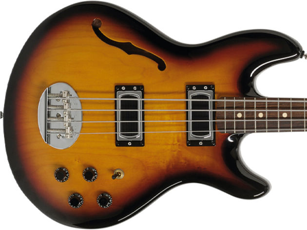 Lakland Skyline Hollowbody Bass build and features