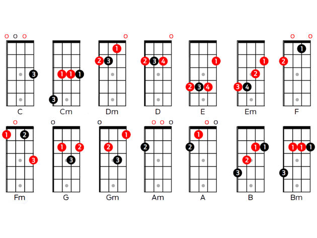 ukulele  chords  tuning and scales for beginners