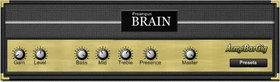 Preampus brain
