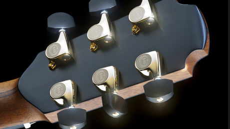 Headstock rear detail