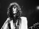 Jimmy Page's new website: is there a Led Zeppelin connection?
