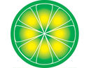 LimeWire shut down by New York judge