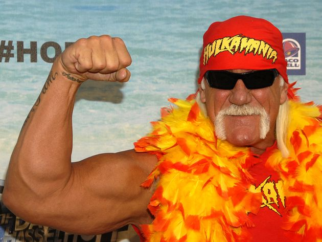 Hulk Hogan and Metallica? Hogan says that's no 'load'