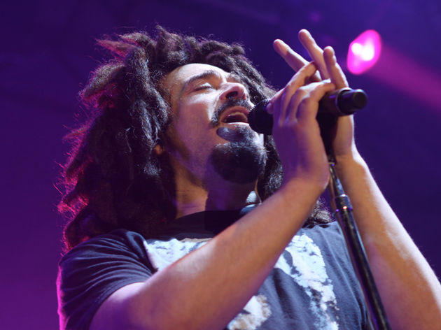 Counting Crows - Have You Seen Me Lately?