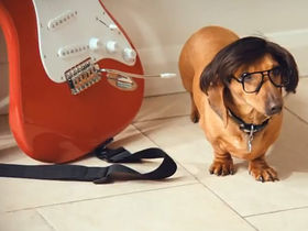 'Hank Marvin' stars in new Mattessons advert