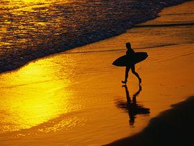 A-Z of surf