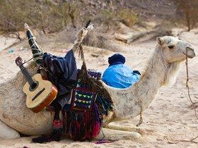 Tuareg man in algerian sahara