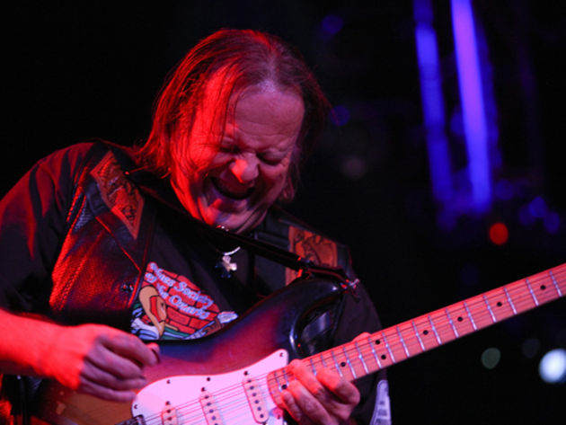 Walter Trout on the 12-bar blues