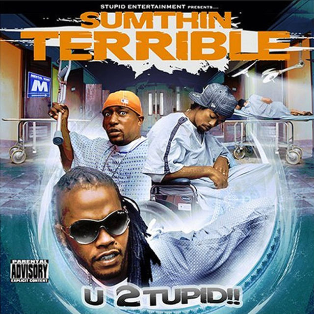 Sumthin' Terrible - U 2tupid